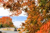 紅葉が進む立石公園の木々=28日