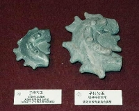 狐井稲荷古墳で発見された子持勾玉(右)と土師の里遺跡出土の子持勾玉
