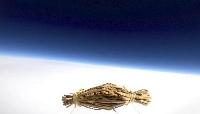 高度2万メートルの成層圏で撮影された水戸納豆。背景下側は地球=9月21日(スペース・バルーン提供)