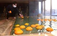 ダイダイを湯船に浮かべ営業の準備をする従業員