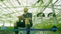 安曇野産ワサビの海外PR動画の一場面