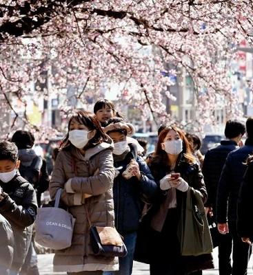 東京・上野公園で、見頃を迎えた早咲きの桜の下を歩くマスク姿の人たち=28日午後