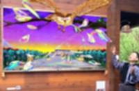 作品を紹介する北山さん。スマホをかざすと、フクロウが絵から飛び出す映像が映し出される