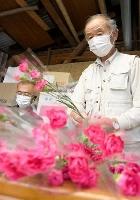 離島の子どもたちに贈るカーネーションを包装する田知行義久さん(右)=7日、鹿児島市
