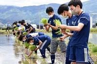 田植えを体験する松本山雅FC・U―18チームの選手たち