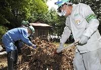 神社の境内に堆積した枯れ葉などを取り除く除染作業=2012年7月、福島県田村市