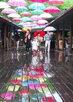 雨でぬれたウッドデッキにも色とりどりの傘が映し出された「アンブレラスカイ」=4日、軽井沢町