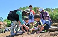 バラの苗を丁寧に植える家族連れら