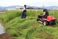 田んぼの草を刈り取る長沼ワーク・ライフ組合の組合員ら