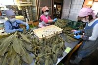 慣れた手つきでほおば巻きを作る女性たち=11日午前9時51分、木曽郡王滝村のひめや
