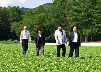 レタス畑で川上村内の高原野菜の農業について青木さん(右から2人目)や小松さん(同3人目)らに説明する由井村長(右)=2021年6月21日