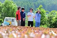 収穫期を迎えた遠藤さん(左)のサニーレタス畑を訪れ、派遣している特定技能のベトナム人らと話す井出さん(右から2人目)=2021年6月9日、川上村