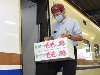 箱詰の川中島白桃を新幹線車両内に積み込む係員