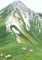 黒部川源流域にたたずむ三俣山荘。「北ア最奥の秘境」として今夏も登山者を引きつけた。奥は鷲羽岳=10日午後2時59分