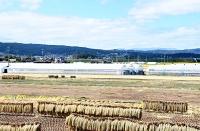 県が遊水地を計画する一帯。優良農地が広がる=27日、佐久市桜井
