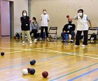 白い目標球「ジャックボール」(左下)を目掛けてボールを投げる参加者
