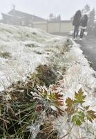 一帯がうっすらと雪化粧した横手山頂ヒュッテ周辺=17日午後1時26分、山ノ内町平穏