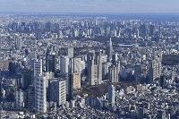 東京都庁(中央)と周辺の町並み