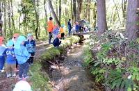 森での遊びを楽しむ園児たち=19日、信濃町